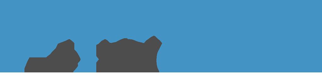 Pronamics Expert Estimation Excel Excelerate logo
